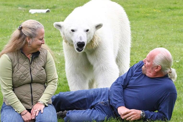 L'unico uomo al mondo il cui migliore amico è un orso polare